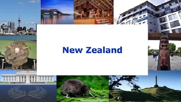 New Zealand - Đất nước với nhiều điều mới lạ để trẻ khám phá